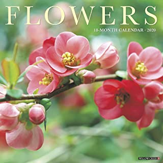 Best flowers page a day calendar 2018 Reviews