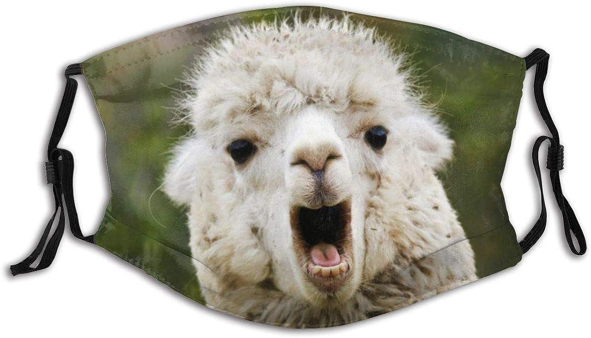 9. Llama Fashion Face Mask