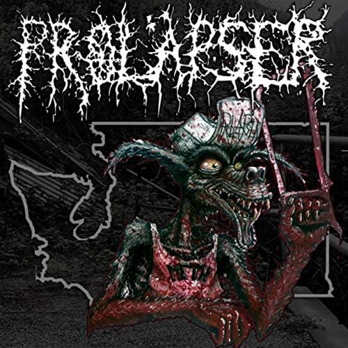 Prolapser