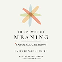 The Power of Meaning: Crafting a Life That Matters