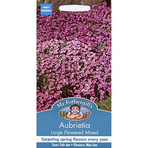 Graines de M. Fothergill - Aubrietia Grande Flowered mixte