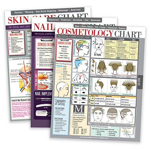 Salon Charts Bundle | Includes One Salon Cosmetology Chart, One Salon Skin Care Chart & One Salon Nail Tech Chart | High Gloss Lamination