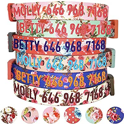 Blueberry Pet 8 Patterns Personalized Customized Adjustable ID Dog Collar, Spring Scent Rose Floral, Turquoise, Small, Embroidered with Name & Phone Number