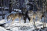 Lobo en la Nieve Lienzo Arte de la Pared póster en imágenes Decorativas para la habitación decoración del hogar70x105cmPintura sin Marco