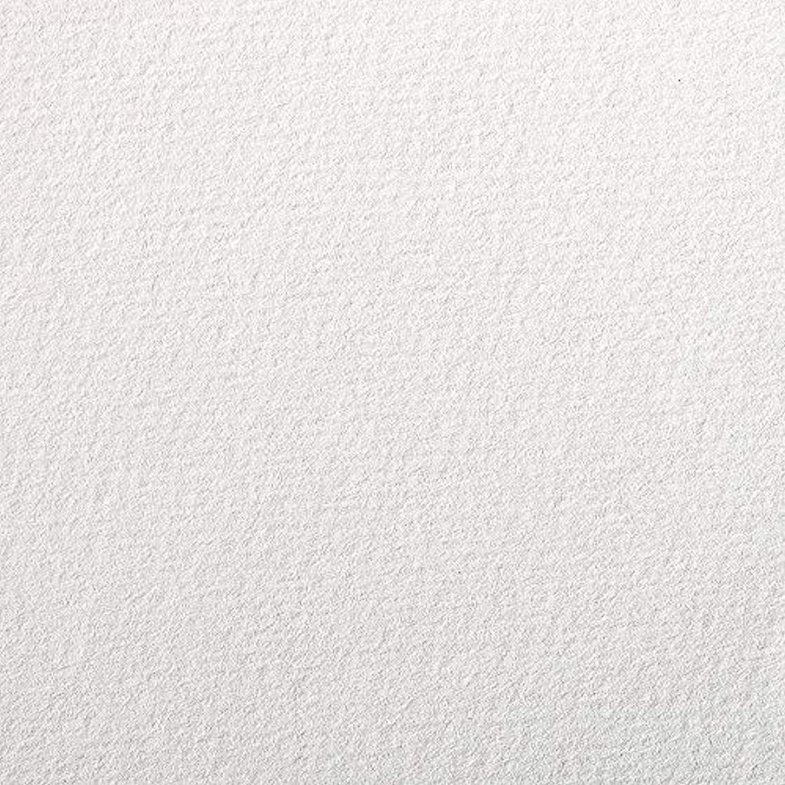 Clairefontaine Etival Coloured Grained Drawing Paper, 160 g, 50 x 65 cm - White, Pack of 24 Sheets