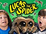 Kids React To Spiders? (Lucas The Spider)