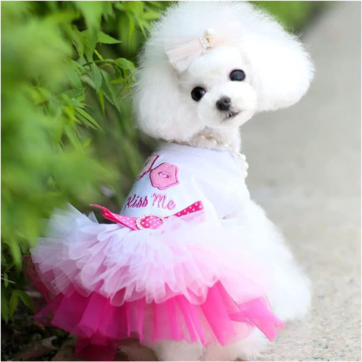 Pet Dog Clothes Clothing Puppy Dress Fr Ranking Beauty products TOP7 Summer