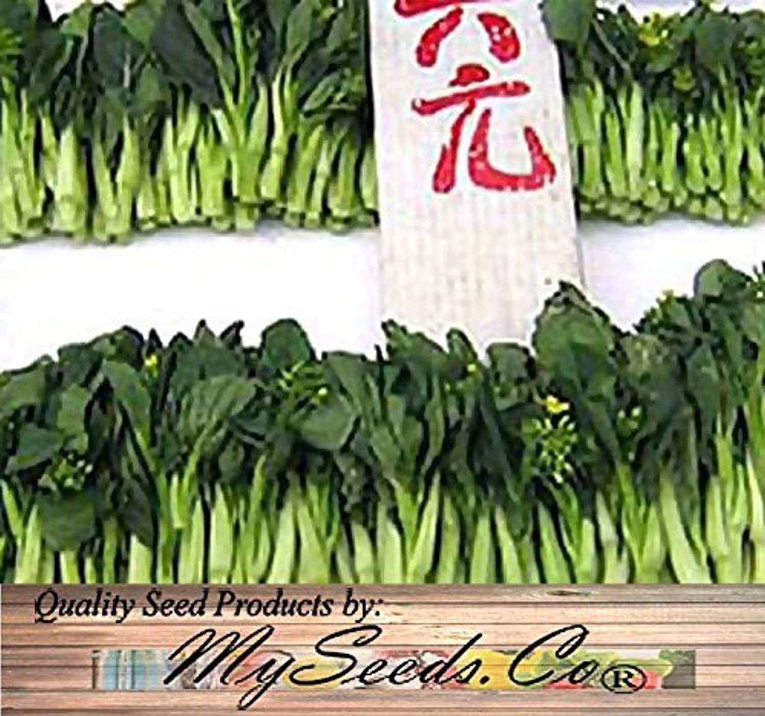 250 Choy Sum Brassica Vegetable Seed Seeds TSOI SIM CHOY SIM  EXCELLENT FLAVOR by MySeeds.Co