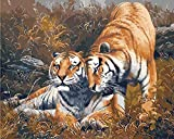 ZXlDXF Pintura por números – Dos tigres de ocioso bricolaje pintura al óleo digital lienzo para decoración del hogar pre-impreso lienzo de calidad artística pinturas acrílicas – 40 x 50 cm (sin marco)