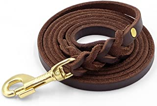 Fairwin Leather Dog Leash 6 Foot - Braided Heavy Duty Training Leash for Large Medium Small Dogs Running and Walking