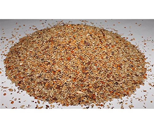 Kanarienfutter ohne Rübsen 10 kg Anhaltiner Premiumfutter