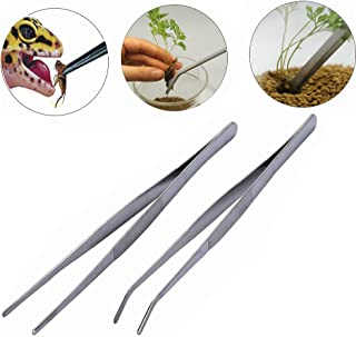 BinaryABC Stainless Steel Straight and Curved Nippers Tweezers Feeding Tongs for Reptile Snakes Lizards Spider(Silver) 2pcs