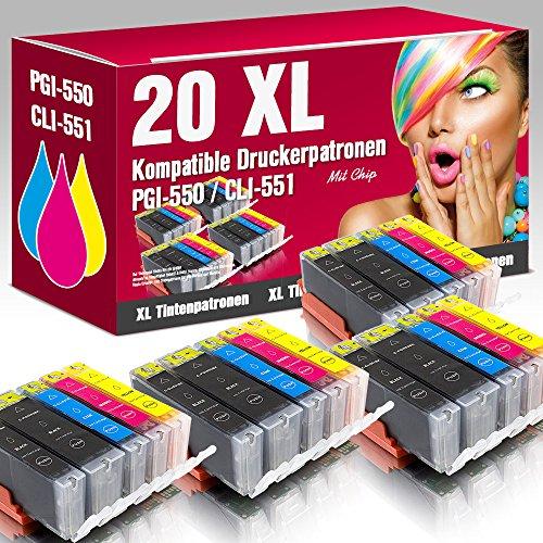 ms-Point 20 kompatible Druckerpatronen PGI-550 CLI-551 mit CHIP für Canon
