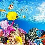 SODIAL Aquarium Papier de Fond Image HD 3D tridimensionnel Fond d'ecran de Poissons...