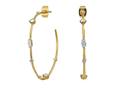 gorjana Dani Hoops Earrings (Gold) Earring