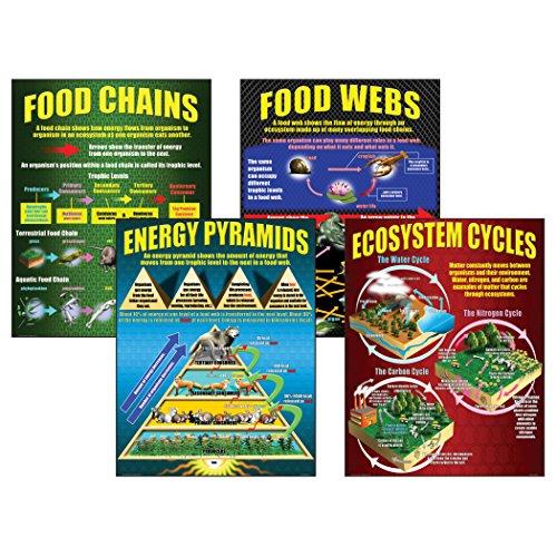 McDonald Publishing MC-P059 Ecosystems Teaching Poster Set