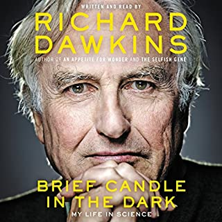 Brief Candle in the Dark cover art