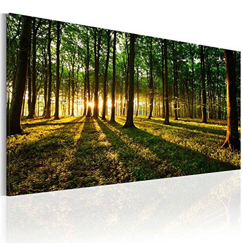 murando Cuadro en Lienzo 80x40 cm 1 Parte Impresión en Material Tejido no Tejido Impresión Artística Imagen Gráfica Decoracion de Pared Bosque Natura Paisaje c-B-0057-b-a