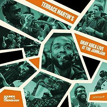 Sounds of Crenshaw & Jammcard present: Terrace Martin's Gray Area Live at the JammJam