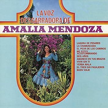 La Voz Desgarradora de Amalia Mendoza