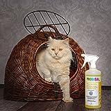 Geruchsneutralisierer Spray gegen Gerüche von Katzen-Urin - 8