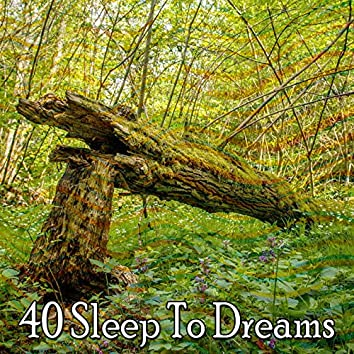 40 Sleep to Dreams