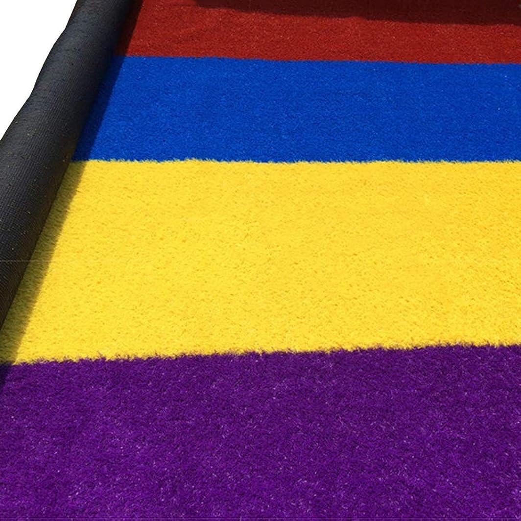 アラート四半期インターネット人工芝 4色シミュレーション芝生、幼稚園人工カーペットサッカーフィールド屋外レインボー滑走路屋内装飾プラスチック芝生カーペットを厚く (Color : 2.5cm, Size : 4 m X 0.5 m)