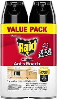 Best the raid free stream Reviews
