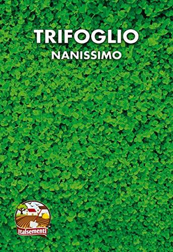 TRIFOGLIO NANISSIMO - SEMI 100 gr.