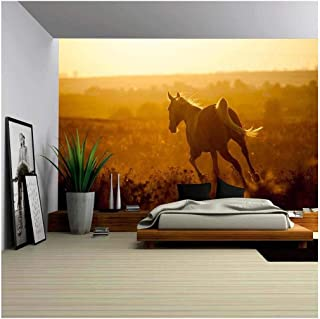 wall26 - Arabian Horse on Sunset - Removable Wall Mural   Self-Adhesive Large Wallpaper - 66x96 inches