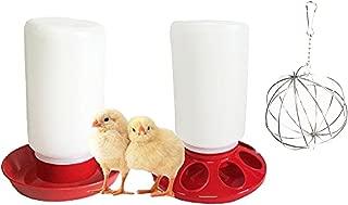 Chicken Starter Kit Supplies: Chicken Feeder, Waterer and Treat Ball - All You Need To Start Raising Chicks
