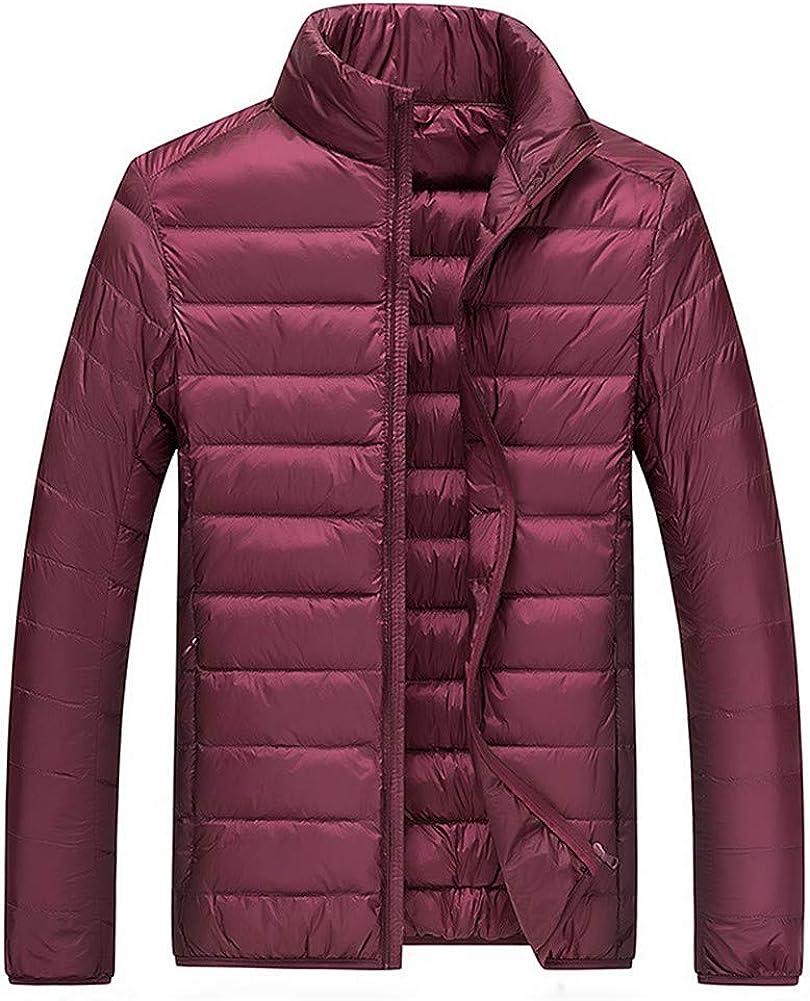 EFFIE Men's Short Warm Down Jacket Winter Stand Collar Slim Lightweight Coat (Wine red, L)