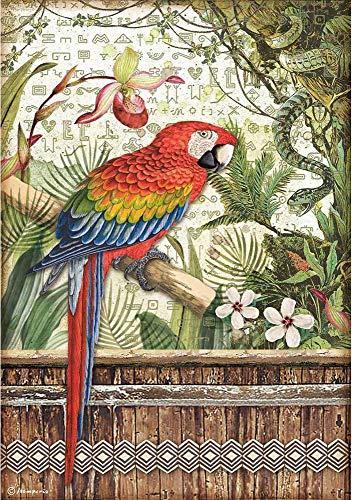 Stamperia International Stamperia-Arroz Paper-Amazonia Parrot, multicolor, A4