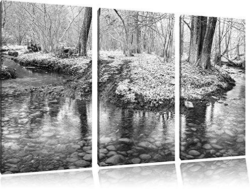 Pixxprint schneebedeckter Waldboden / 3-Teilig/Gesamtmaß 120cm Leinwandbild bespannt auf Holzrahmen/Wandbild Kunstdruck Dekoration