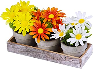 Set of 3 Artificial Daisy Flowers in Pots Orange Yellow White Silk Sunflower Mini Potted Plants Arrangement with Wood Planter Box for Spring Summer Indoor Office Tabletop Décor Wedding Centerpiece