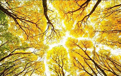 Yosot 3D behang op maat foto woonkamer Hang plafond muurschildering mooie houten herfst 3D schilderen niet-geweven behang voor muur 3D 140cmx100cm