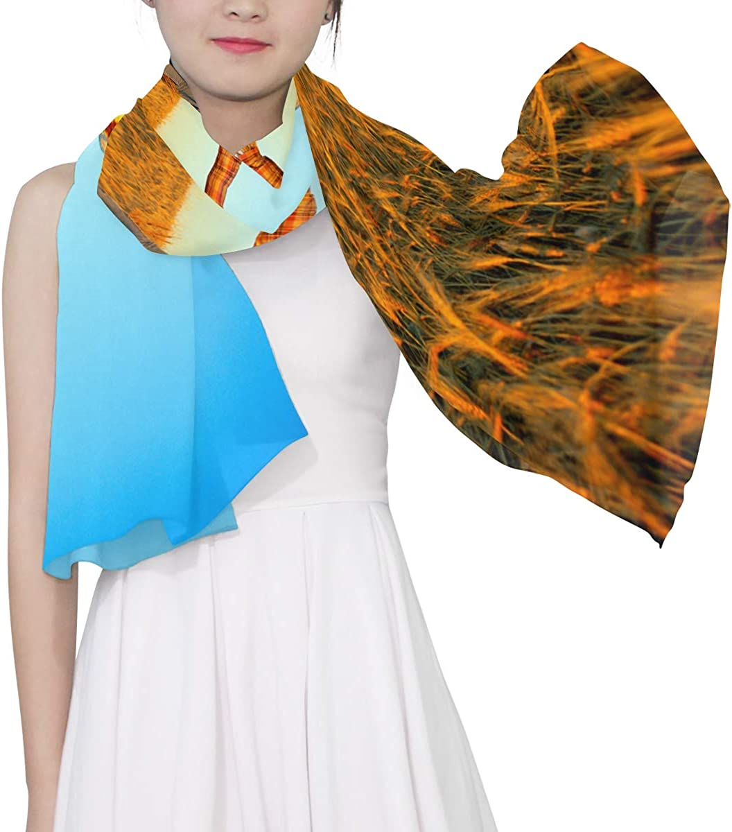 Cute Scarecrow Doll Unique Fashion Scarf For Women Lightweight Fashion Fall Winter Print Scarves Shawl Wraps Gifts For Early Spring