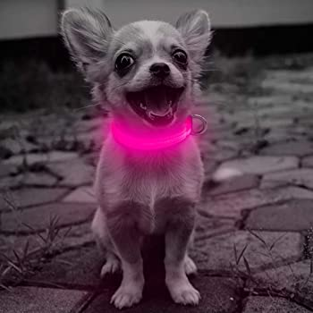 Domi Led Dog Collar, USB Rechargeable Lighted Collar Glow in Dark, Adjustiable Reflective Flashing Collars for Your Small Dogs and Cats(XS, Pink)
