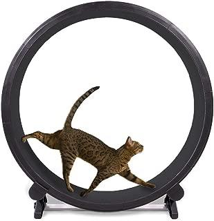indoor cat exercise wheel