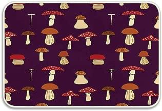 Huayuanhurug Mushroom Abstract Design of Chanterelle Amanita Muscaria Porcini Greasers and Champignon Doormat Non Slip Bathmat Absorbent Bath Rugs Memory Foam Bath Mats Size 23.6