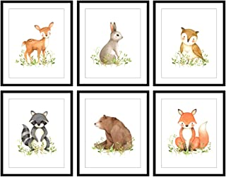 Bestbuddy Pet Set of 6 (8X10) Unframed Woodland Animals Deer Bunny Owl Raccoon Bear Fox Nursery Art Prints Set Kids Baby Boy Girl Room Wall Decor BBPAP005d