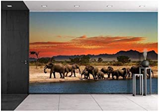 wall26 - Herd of Elephants in African Savanna at Sunset - Removable Wall Mural | Self-Adhesive Large Wallpaper - 100x144 inches