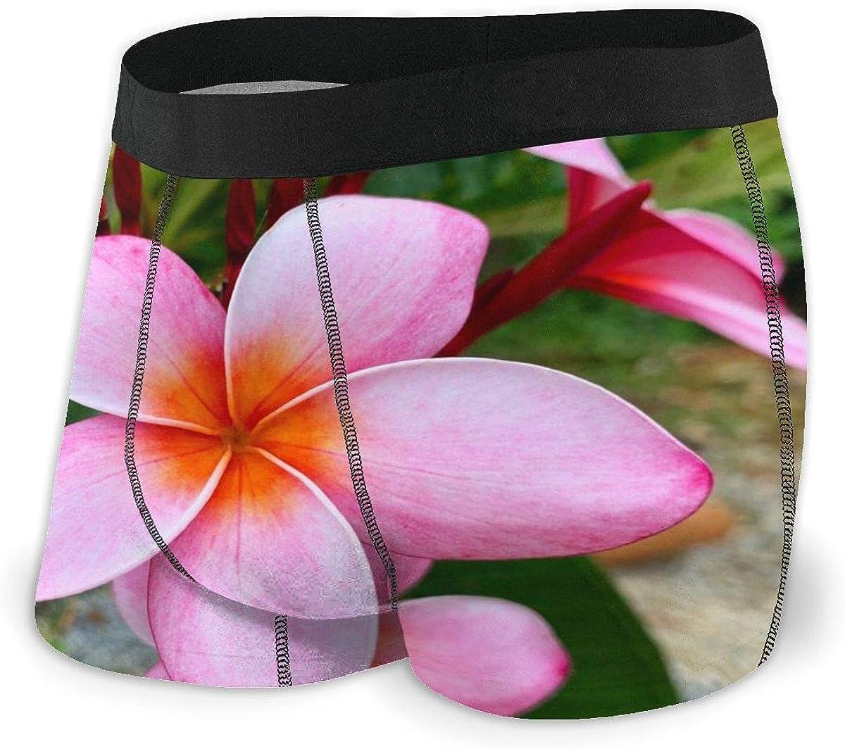 Randolph Wordsworth Mens Boxer Briefs Pink Plumeria Flower Vector Breathable Underwear