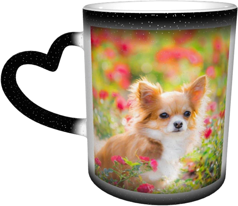 Superlatite Universal Ceramic Heat Ranking TOP3 Sensitive Color Cup Coffee Cups Changing
