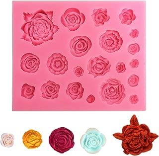 2 moldes de silicona para fondant con formas de rosas y hojas, de FineGood Chocolate Sugarcraft – Jabón de arcilla para decoración de tartas – Rosa