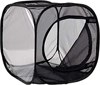 Clearance Sale!DEESEE(TM)🍁🍁Portable Foldable Insect and Butterfly Habitat Cage Housing Enclosure