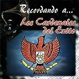 Mosaico Gaitas Pa'Mi Pueblo