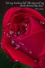Deut. 32:2a Floral Scripture Journal: 120 page, 6
