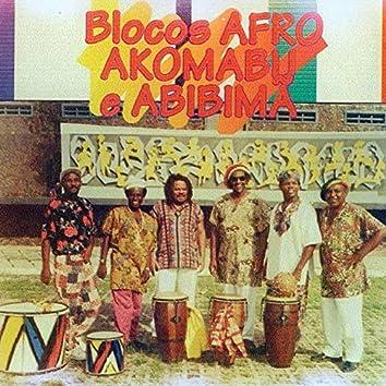 Bloco Afro Akomabu e Abibimã