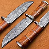 Sharp Forest Knives BK-3004 Handmade Damascus Steel 12.00 Inches Damascus Steel Bowie Knive - Coloured Camel Bone Brass Spicer Handle with Damascus Gurd/Pommel